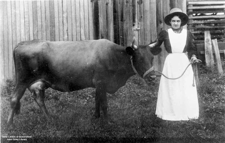 Dairy woman, about 1900. From State Library at Queensland, John Oxley Library.